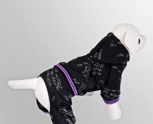 Tracksuit - Autograph - Black - dog clothing, dog apparel, dog clothes - Essenti Enterprises, LLC - importer, exporter, supplier, distributor of pet products