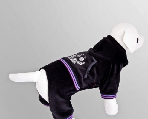 Tracksuit - Paw Print - Black - dog clothing, dog apparel, dog clothes - Essenti Enterprises, LLC - importer, exporter, supplier, distributor of pet products