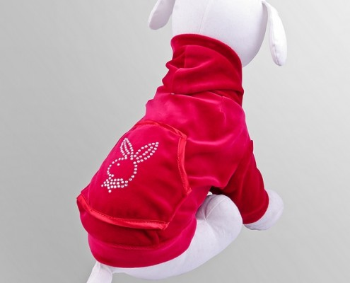 Velour sweatshirt with crystals - Bunny - Red - dog clothing, dog apparel, dog clothes - Essenti Enterprises, LLC - importer, exporter, supplier, distributor of pet products